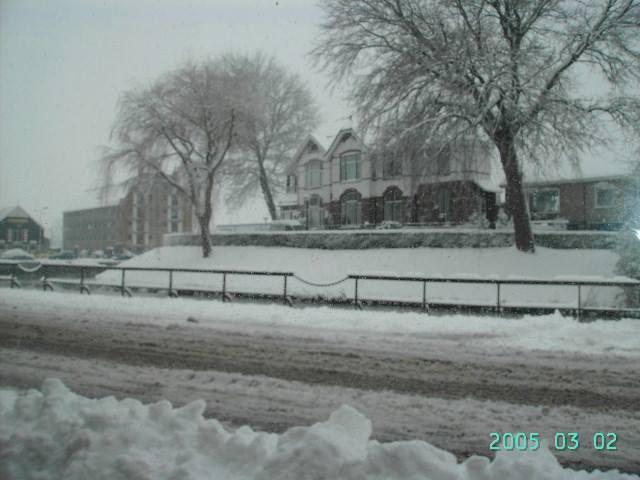 2005-C