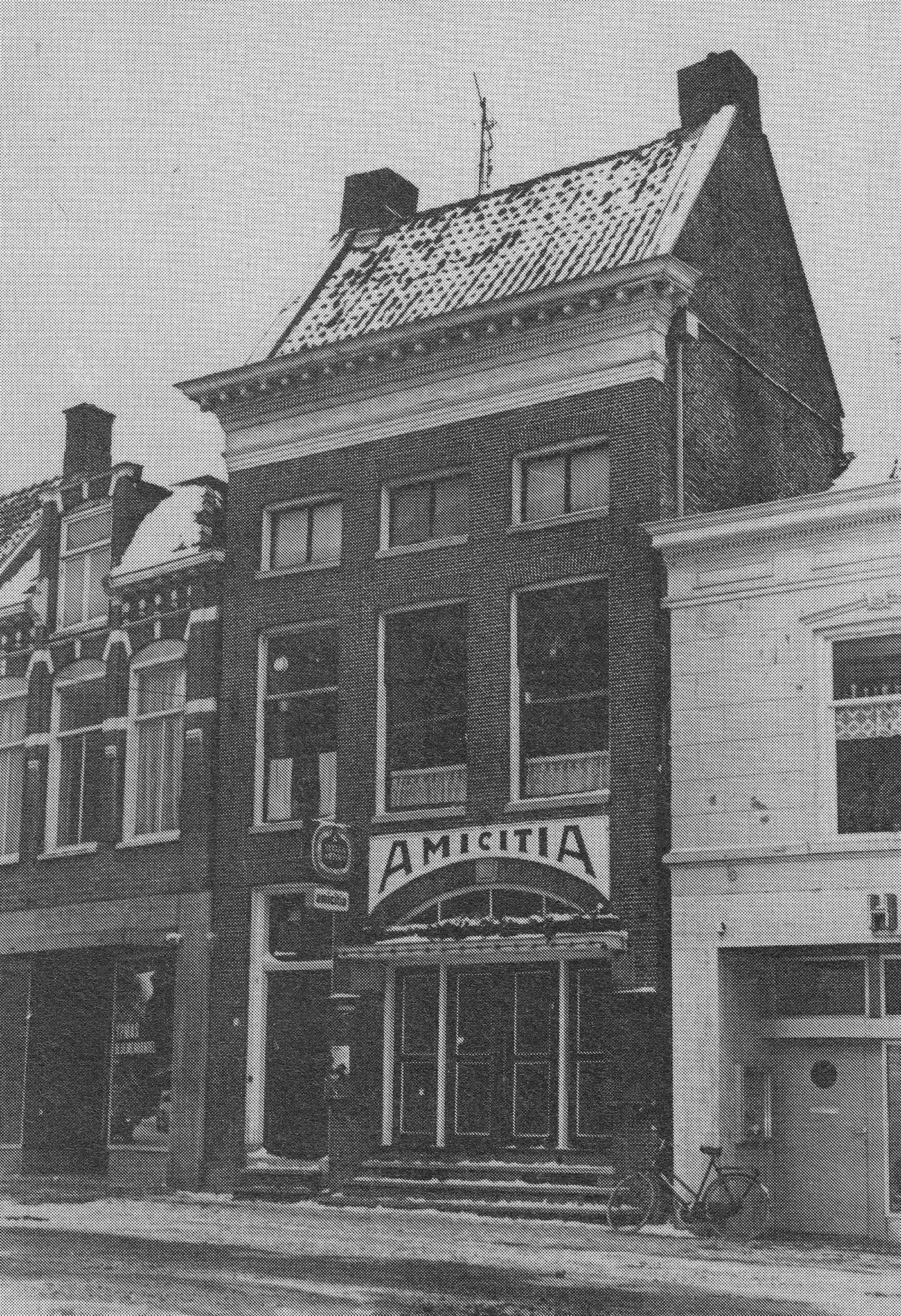 Amacitia-1982