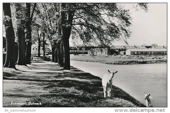 Bolwerk-1965